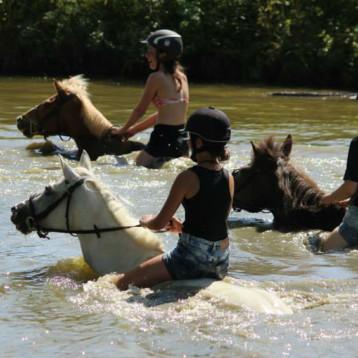 L'été au Shamrock les enfants se baignent avec les poneys !
