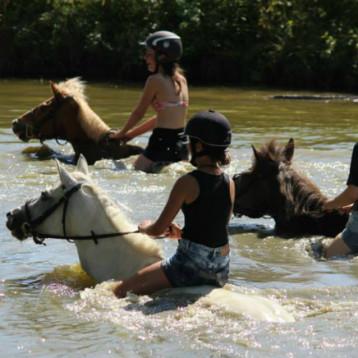 Stages d'équitation été 2019 : Renseignements et inscriptions